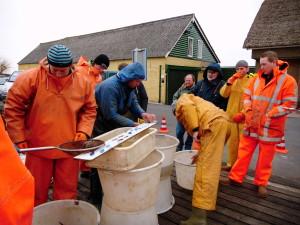 Visserij Service Nederland cursus visstandbemonstering