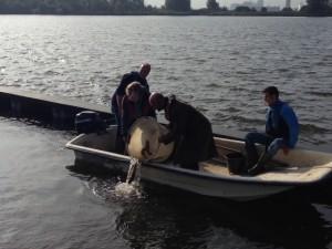 Vrijlaten vissen - foto: Sportvisserij Midwest Nederland