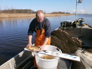 Meten Visserij Service Nederland