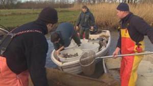 visserijkundig-onderzoek-zuiderdiep-video_306x306_81874